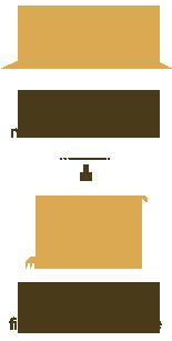 lupin blanc les esp ces cultiv es cultures utilisation terres univia. Black Bedroom Furniture Sets. Home Design Ideas